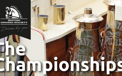 The Championship Show 2021