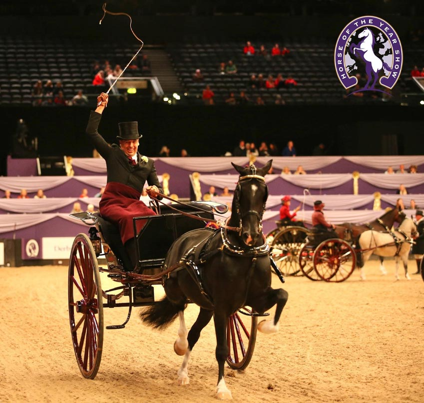 Horse & Country TV Harness Horse and Pony of the Year Championship